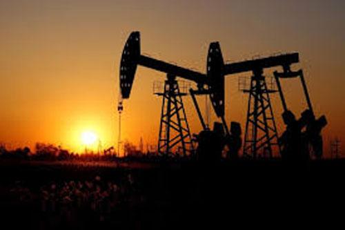 Giá xăng, dầu (25/1): Lao dốc không phanh