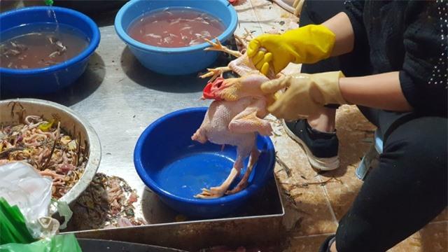 Hải Dương: Hốt bạc từ dịch vụ mổ gà thuê ngày Tết - 1