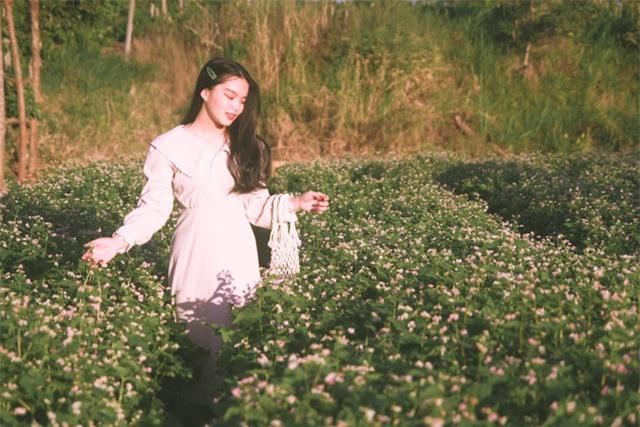 Đầu xuân, thiếu nữ đua sắc cùng hoa tam giác mạch xứ Bắc giữa lòng phố núi - 3