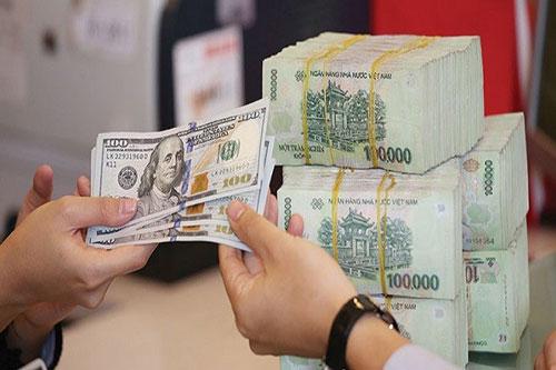 Ngân hàng Nhà nước và một năm ghi dấu ấn trong điều hành chính sách tiền tệ