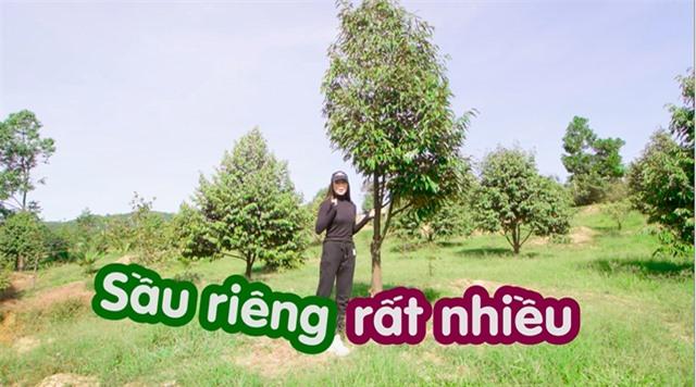 """Nông trại tiền tỷ có suối chảy róc rách của """"mỹ nhân hàng hiệu"""" trong showbiz Việt - 5"""
