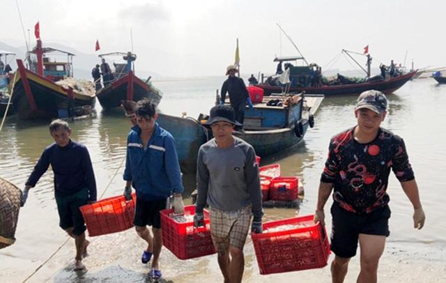 Ngư dân đưa cá lên bờ bán cho tiểu thương