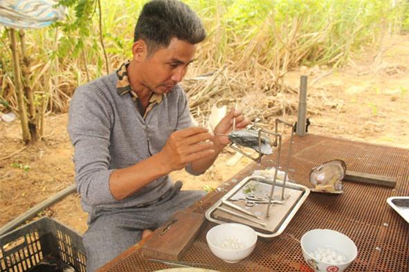 Anh Nghiêm Quang Tuấn (huyện M'Đrắk) thực hiện công đoạn cấy tế bào và nhân vào con trai.