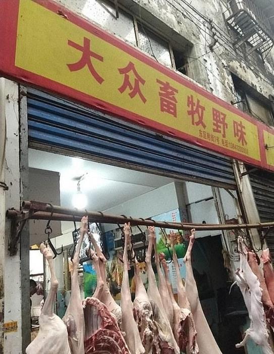 khu chợ ở Vũ Hán – nơi phát tán dịch bệnh do virus corona ra khắp thế giới