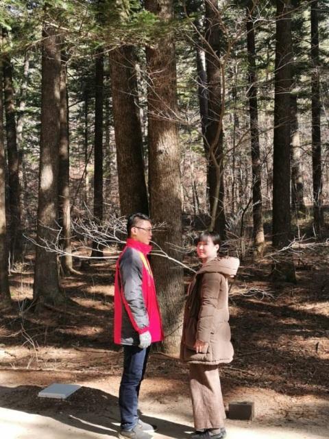 Rừng thông trong đền Woljeongsa bối cảnh nơi Dokkaebi thổ lộ tình cảm của mình dành cho Eun-tak.