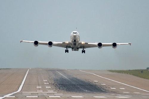"""Siêu máy bay của Hải quân Mỹ suýt bị """"hạ gục"""" bởi… một con chim"""
