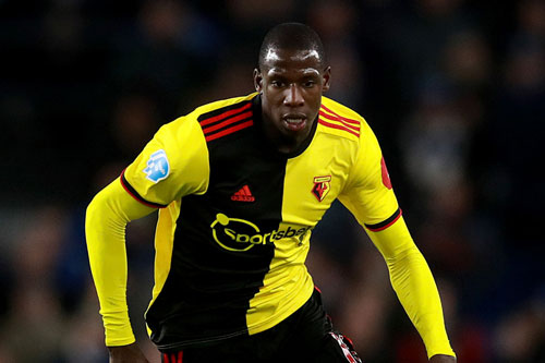 Tiền vệ trung tâm: Abdoulaye Doucoure (Watford).