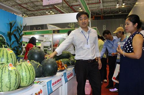 """Ngành hàng trái cây cần có """"nhạc trưởng"""" điều phối sản xuất và xuất khẩu"""