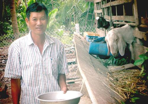 Ông Thái chăm sóc đàn dê