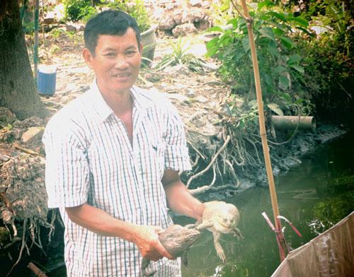 Ông Nguyễn Thái bên hồ ếch giống