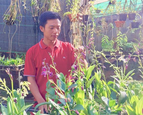 Gia đình anh Phan Đình Sỹ có thu nhập ổn định nhờ trồng hoa lan.