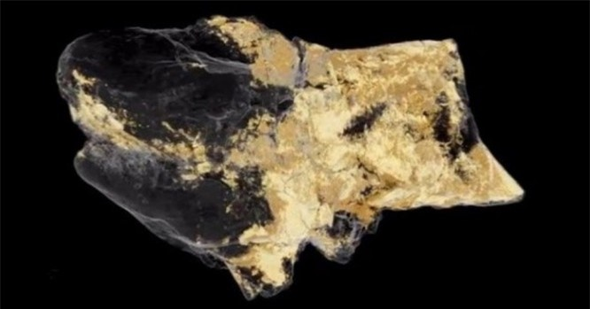 Top 8 khám phá khảo cổ khiến cả thế giới sửng sốt - ảnh 1