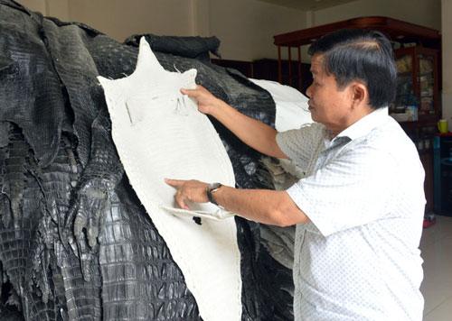 Ông Trương Thanh Mai sở hữu trang trại cá sấu lên đến 40.000 con.
