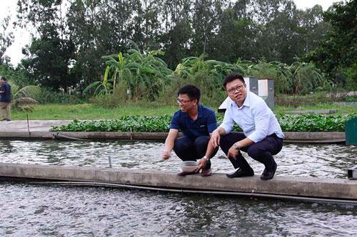 Hải Dương: Anh em cùng đào con sông 'chảy ra vàng', dựng cơ nghiệp 300 tỷ đồng