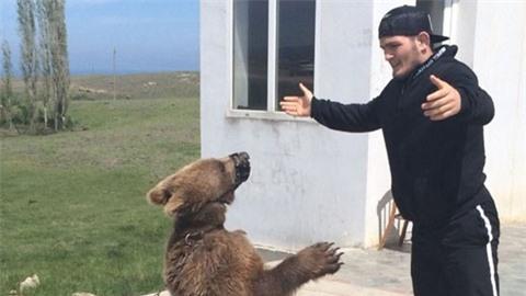 Nurmagomedov từng tập luyện với gấu trước khi đánh bại McGregor vào năm 2018
