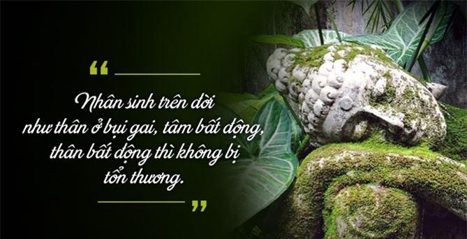 phat yeu (2)