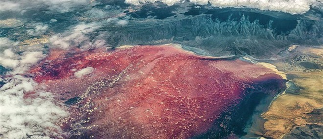 Bí ẩn về hồ nước tử thần khiến động vật hóa đá khi rơi xuống - Ảnh 3.