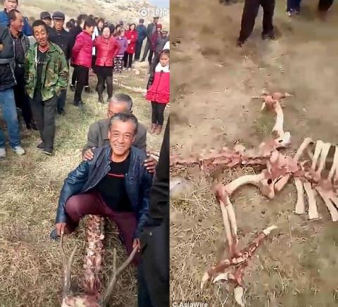 Bộ xương bí ẩn gây xôn xao ở Trung Quốc