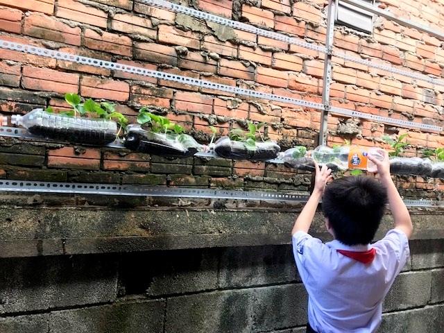 Học sinh trường THCS Thanh Đa tích cực tham gia các hoạt động bảo vệ môi trường