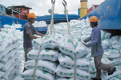 Xuất khẩu gạo có nhiều cơ hội mới (Ảnh: Internet)