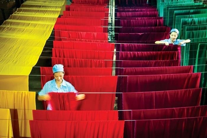 Lụa tơ tằm của Việt Nam rất được thế giới ưu chuộng nhưng giống tằm vẫn phụ thuộc vào nước ngoài