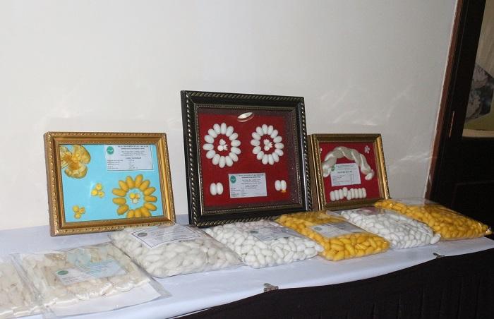 Bàn trưng bày một số giống tằm năng xuất cao do Việt Nam sản xuất (Ảnh: VH)