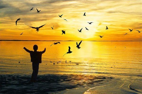 Kiếp nhân sinh: tâm rộng lượng là phúc, tâm an tĩnh là yên vui - Ảnh 2