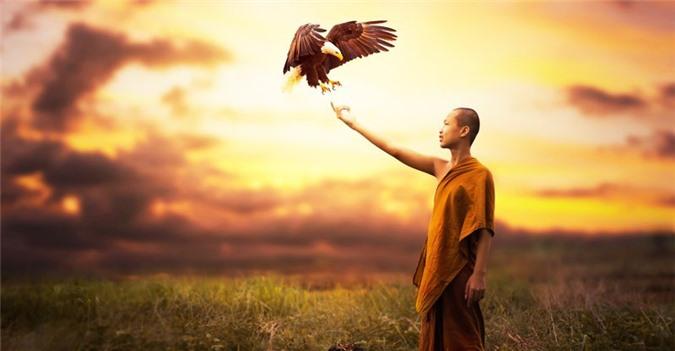 6 chân lý hạnh phúc từ những lời Phật dạy: ai đã biết thì đừng bao giờ bỏ qua - Ảnh 2