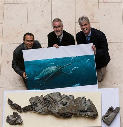 Quái vật biển đáng sợ hơn cả quái vật hồ Loch Ness - 2