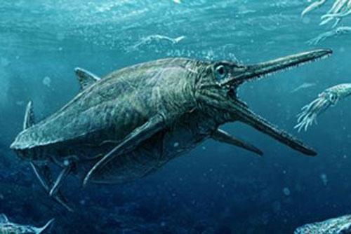 Quái vật biển với hàm răng hàng trăm chiếc.