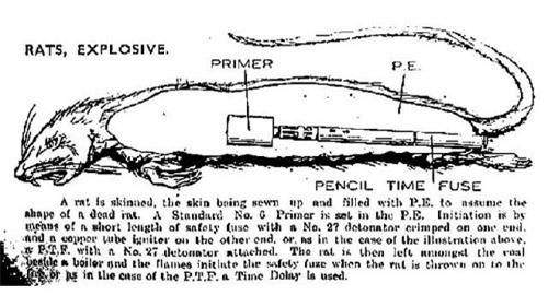 Những vũ khí kỳ lạ của Thế chiến 2 - 4