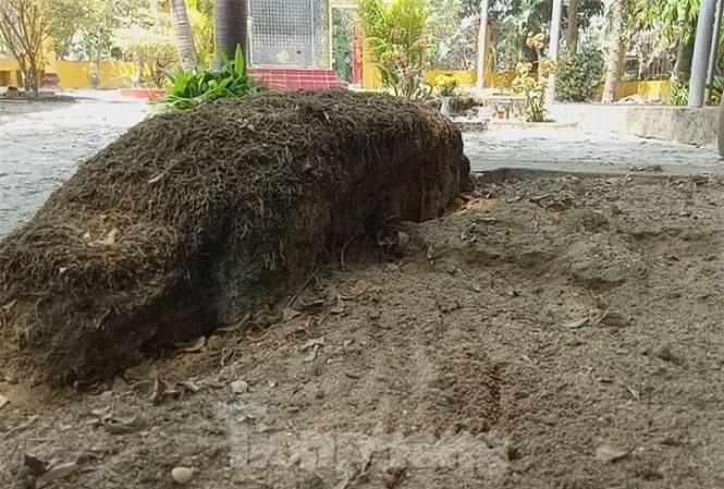 Bí ẩn ngôi mộ cổ của vị tướng quân không ai dám đến gần ở Bình Dương - ảnh 5