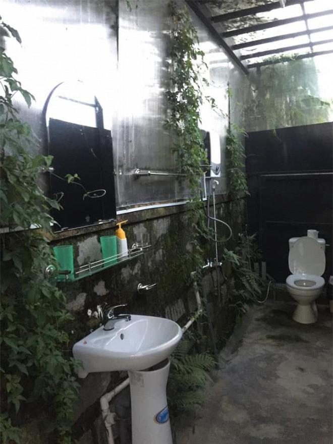 mẫu nhà vệ sinh độc lạ 0