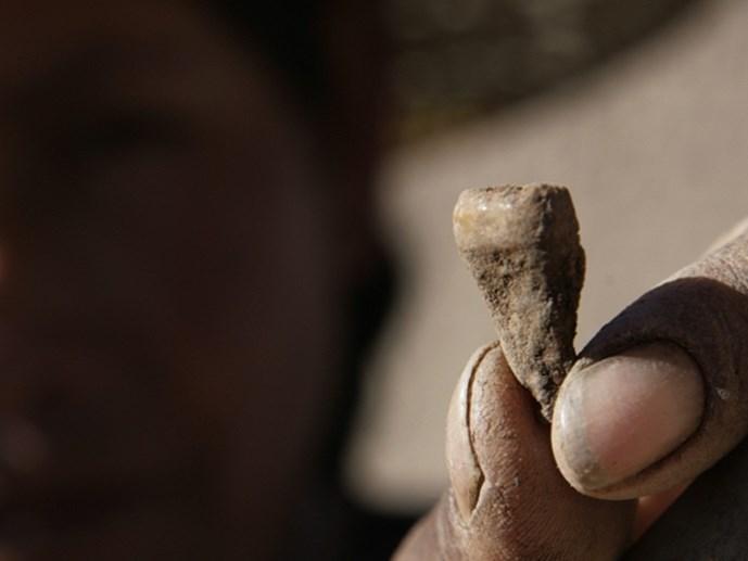 Phát hiện mới về những chiếc răng thách thức các quan niệm cũ về tổ tiên người châu Á