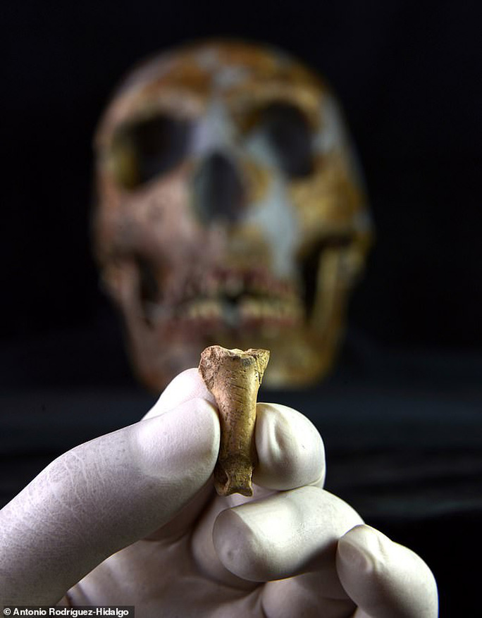 """Cận cảnh """"kỷ vật cuối cùng"""" của người Neanderthals - ảnh: Antonio Rodriguez-Hidalgo"""