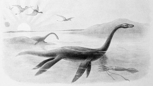 Quái vật hồ Loch Ness được cho là có thân giống voi, đầu dài.