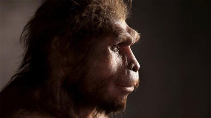 Chân dung 7 loài người khác từng sống song song với chúng ta - Ảnh 3.
