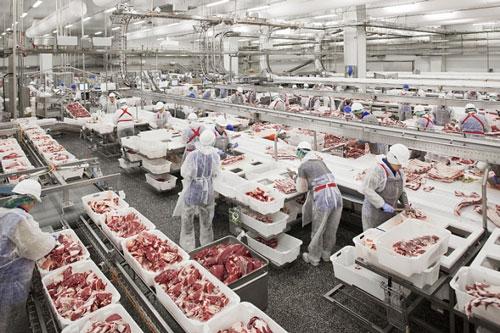 Gần 1.500 tấn thịt lợn Nga đã được nhập về Việt Nam qua cảng Cát Lái, Phước Long và cảng Hải Phòng.