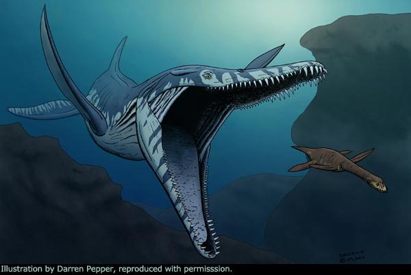Pliosaur còn có cái tên Predator X, được công khai sự tồn tại từ 2009. Ảnh: Darren Pepper.