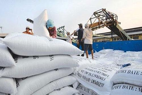 Bộ Công Thương kiến nghị cho xuất khẩu gạo trở lại (Ảnh: Internet)