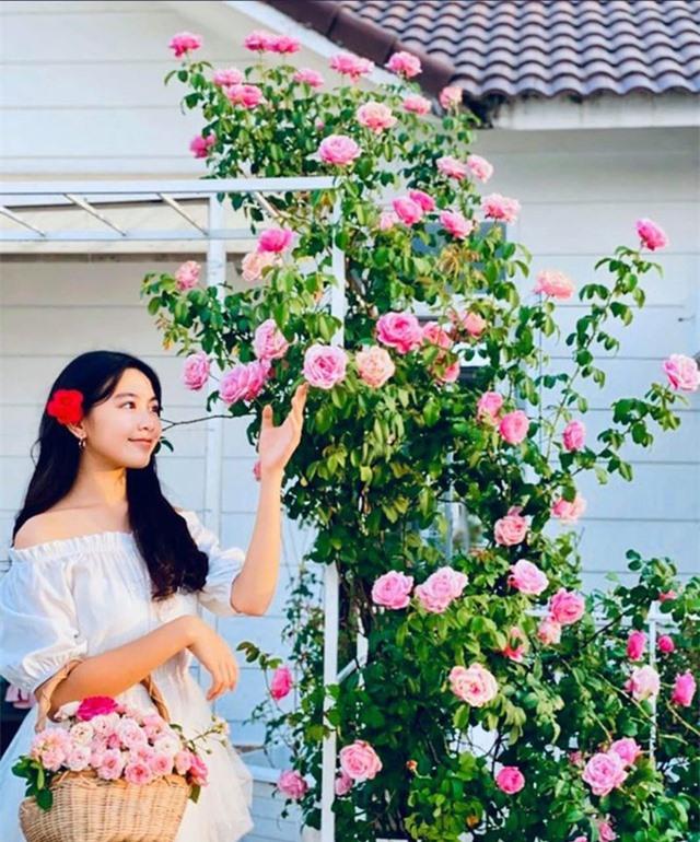 Đã mắt với khu vườn sai trĩu quả, ngập hoa của gia đình MC Quyền Linh - 15