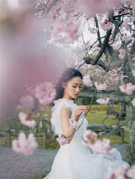 Sao nữ xứ Trung bên hoa đào: Dương Mịch khí chất, Angelababy như công chúa - Ảnh 4.