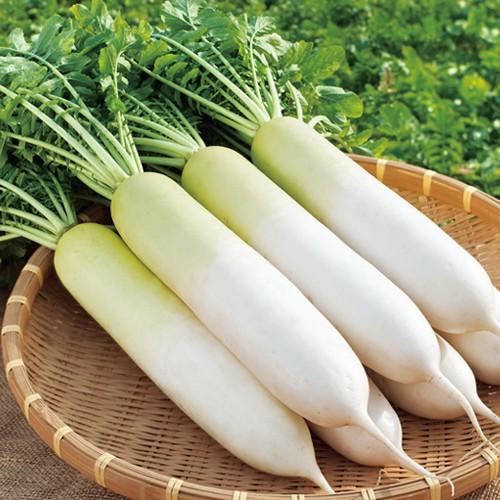 """Củ cải trắng được cho là """"thần dược"""" để chữa chứng táo bón. Ảnh minh họa: Internet"""