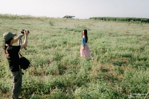 Bên cạnh cánh đồng lau thì đồng hoa dại nở tím li ti nơi đây cũng thu hút rất nhiều bạn trẻ đến chụp hình. Ảnh: Lê Thắng
