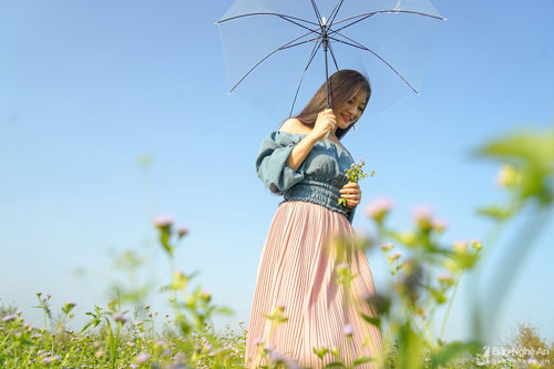 Những bông hoa dại sắc tím khắp nơi tạo nên khung cảnh rất đáng để trải nghiệm. Ảnh: Sách Nguyễn