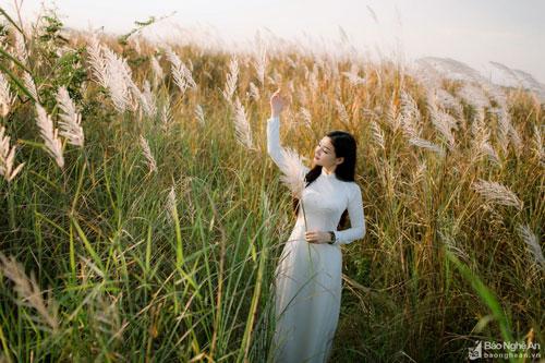 """Nơi đây có rất nhiều góc chụp """"ăn"""" ảnh. Nhiều bạn trẻ thích diện trang phục áo dài để tạo dáng trên cánh đồng lau. Ảnh: Lê Thắng"""