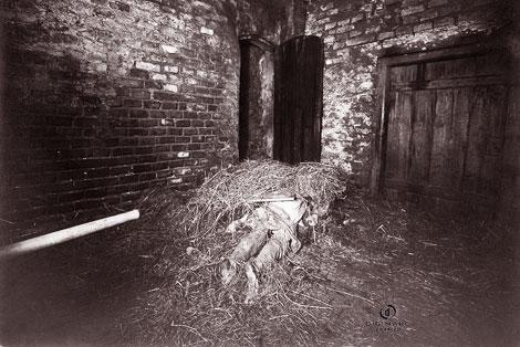 Xác chết bị lấp bởi cỏ khô