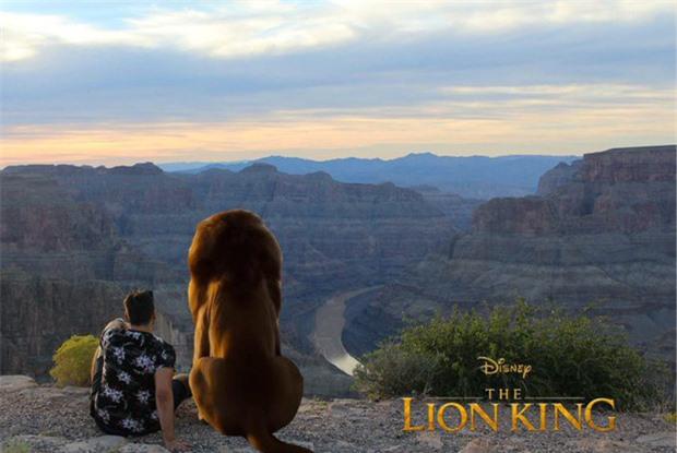 Bối cảnh phù hợp để đóng Lion King.