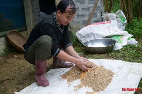 Nói là làm, Nam vay mượn được hơn 40 triệu đồng tiền vốn từ người thân rồi ra bờ suối cạnh nhà dựng lều trại, quây lưới để thả những lứa vịt đầu tiên.