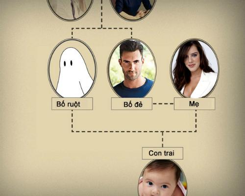 Minh họa cho quá trình Chimera: Cậu bé được cặp vợ chồng nọ sinh ra, nhưng cậu bé lại là con sinh học của ông bác. Ông bác này là bào thai song sinh đã bị cậu em nuốt mất từ trong bụng mẹ. Ảnh minh họa. Nguồn: Internet.